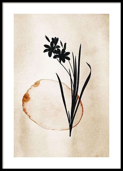 Blossom Outline No1 Poster