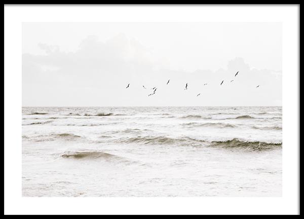 Flock of Seabirds Poster
