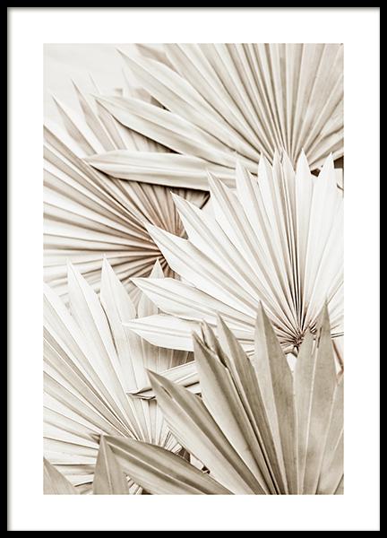 White Palm Poster