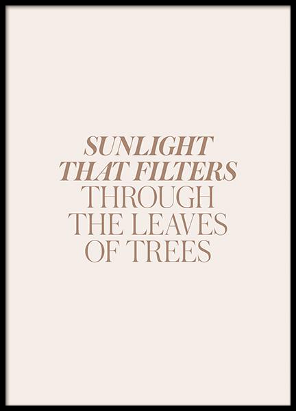Sunlight Through Leaves Poster