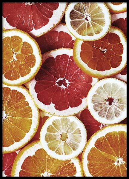 Citrus Fruits Poster in the group Posters & Prints / Kitchen at Desenio AB (2124)