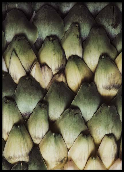 Artichoke Scales Poster in the group Posters & Prints / Kitchen at Desenio AB (2127)