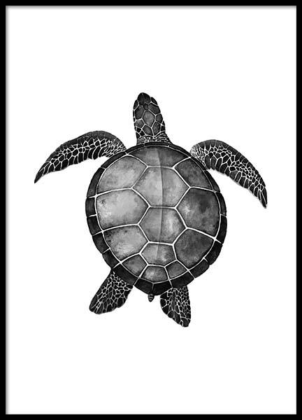 Turtle Poster in the group Posters & Prints / Black & white at Desenio AB (2271)