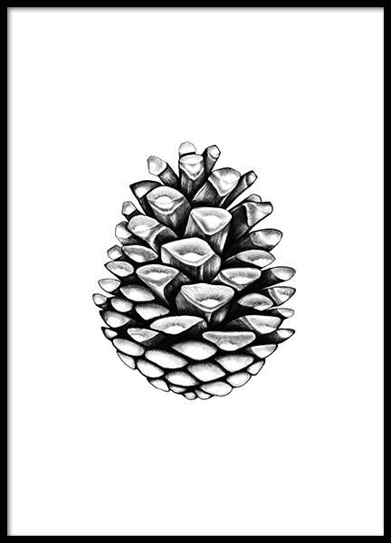 Pinecone Poster in the group Posters & Prints / Illustrations at Desenio AB (2274)