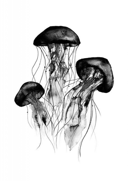 Jellyfish Poster in the group Posters & Prints / Illustrations at Desenio AB (2275)