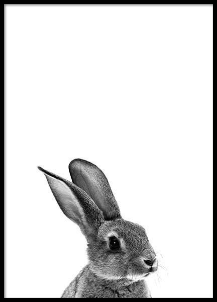 Grey Bunny Poster in the group Posters & Prints / Kids posters at Desenio AB (2302)