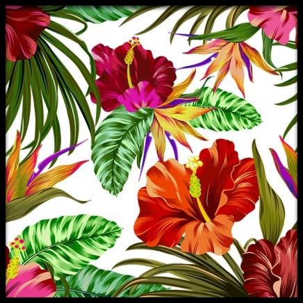 Hibiscus Poster in the group Posters & Prints / Botanical at Desenio AB (2384)