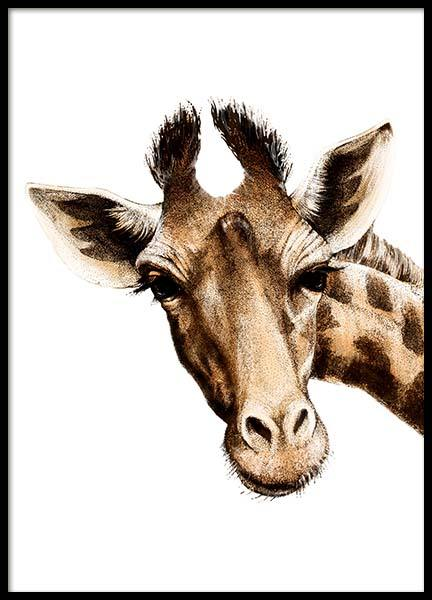 Giraffe 2 Poster in the group Posters & Prints / Kids posters at Desenio AB (2396)