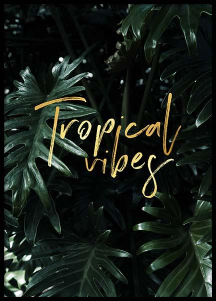 Tropical Poster in the group Posters & Prints / Typography & quotes at Desenio AB (2402)