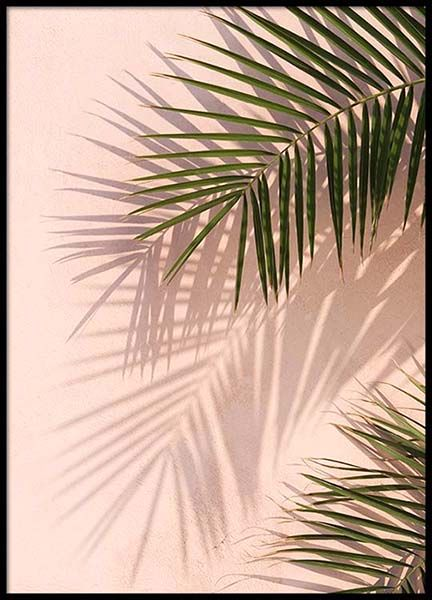 Pink Palm Poster in the group Posters & Prints / Sizes / 50x70cm | 20x28 at Desenio AB (2405)