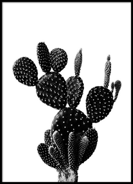 Black Cactus One Poster in the group Posters & Prints / Black & white at Desenio AB (2429)