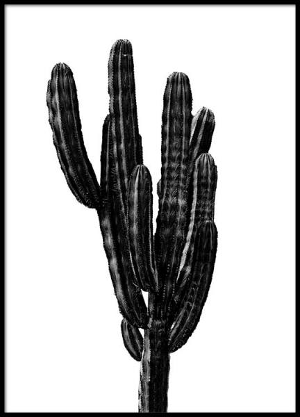Black Cactus Three Poster in the group Posters & Prints / Black & white at Desenio AB (2431)