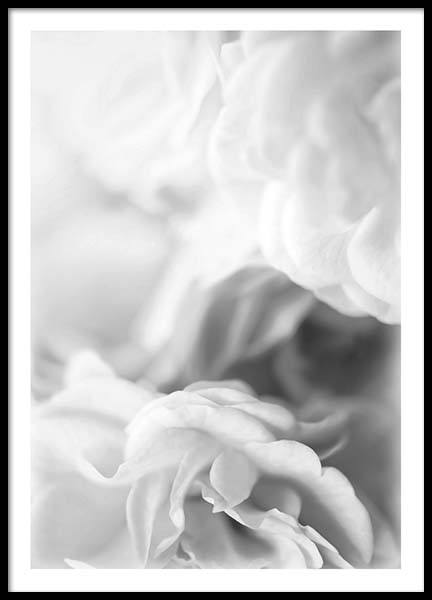 Dusty Rose B&W Poster in the group Posters & Prints / Black & white at Desenio AB (2641)