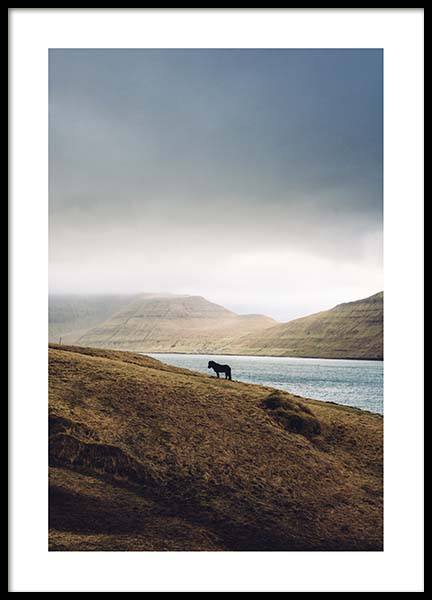 Iceland Horse Poster in the group Posters & Prints / Nature at Desenio AB (2703)
