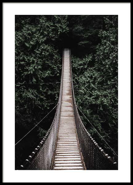 Forest Bridge Poster