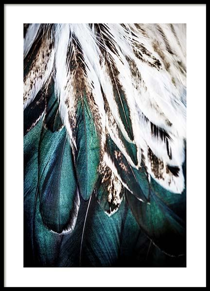 Green Feathers Poster in the group Posters & Prints / Photography at Desenio AB (2732)