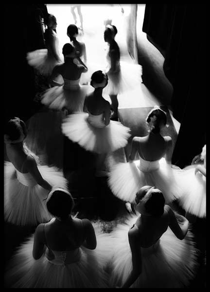 Swan Lake Poster in the group Posters & Prints / Photography at Desenio AB (2755)