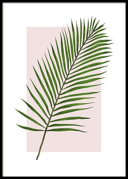 Jungle Leaf Poster in the group Posters & Prints / Sizes / 50x70cm | 20x28 at Desenio AB (2771)