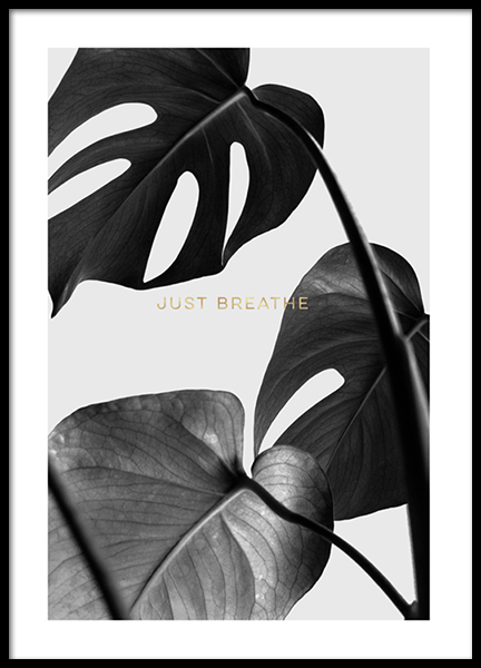 Remember To Breathe Poster in the group Posters & Prints / Botanical at Desenio AB (2784)