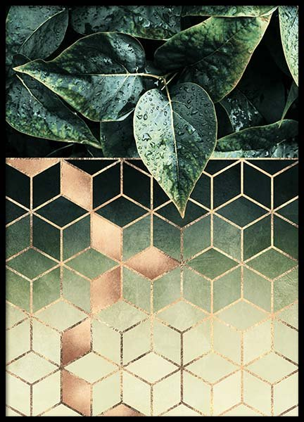 Leaves And Cubes Poster in the group Posters & Prints / Graphical at Desenio AB (2813)