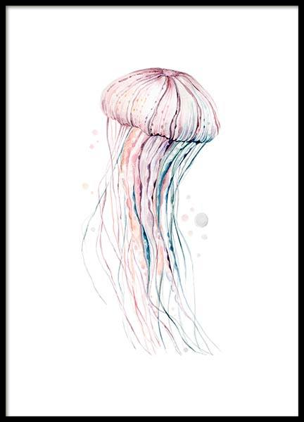 Aquarelle Jellyfish Poster in the group Posters & Prints / Illustrations at Desenio AB (2905)
