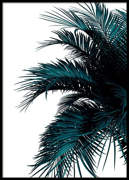 Green Palm Tree Poster in the group Posters & Prints / Botanical at Desenio AB (2907)