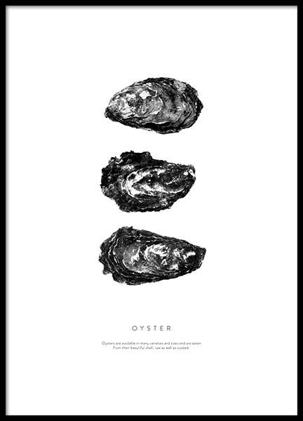 Oyster Three Poster in the group Posters & Prints / Black & white at Desenio AB (3165)