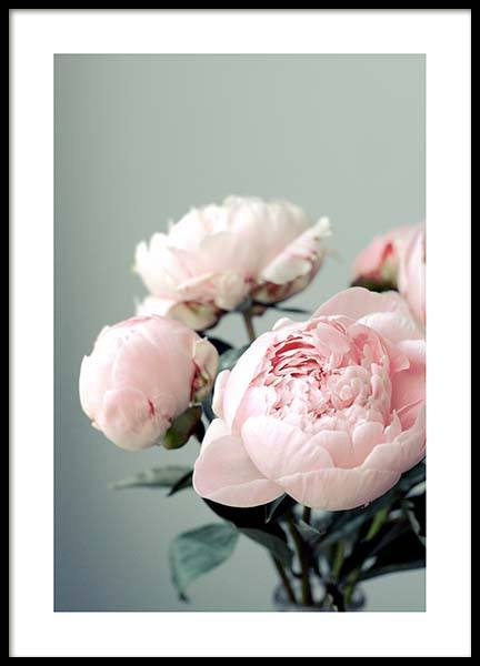 Pink Peonies On Green Poster in the group Posters & Prints / Botanical at Desenio AB (3268)