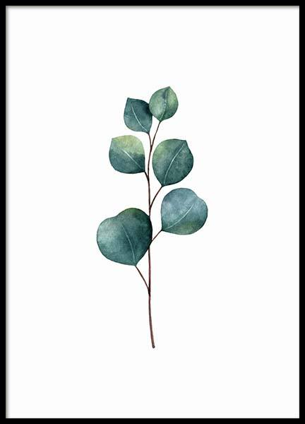 Eucalyptus Poster in the group Posters & Prints / Botanical at Desenio AB (3270)
