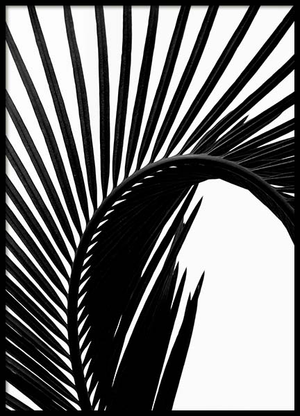 Black Palm Leaf Two Poster in the group Posters & Prints / Botanical at Desenio AB (3278)