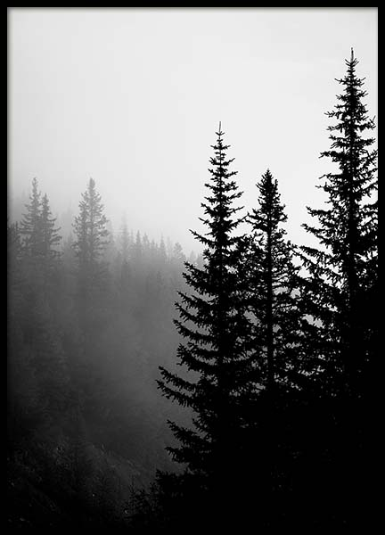Tree Tops B&W Poster in the group Posters & Prints / Black & white at Desenio AB (3304)