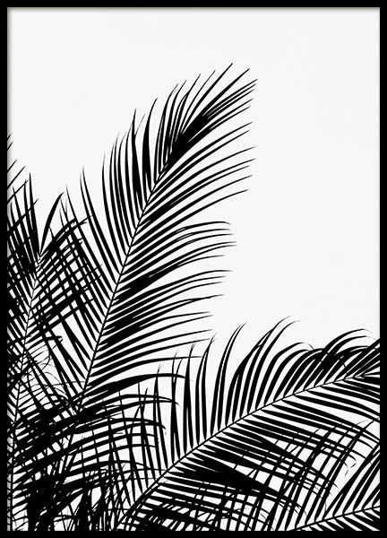 Black Palm Tree Two Poster in the group Posters & Prints / Black & white at Desenio AB (3524)