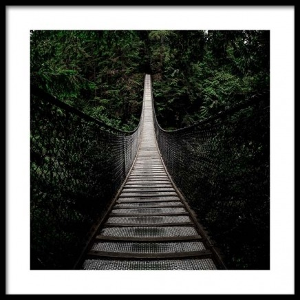 Bridge In Forest Poster in the group Posters & Prints / Nature at Desenio AB (3564)
