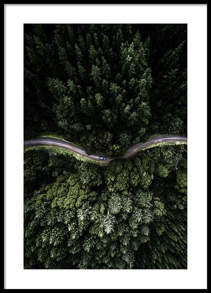 Forest Road Poster in the group Posters & Prints / Nature at Desenio AB (3575)