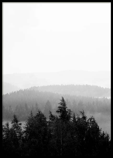 Foggy Woods B&W Poster in the group Posters & Prints / Black & white at Desenio AB (3582)