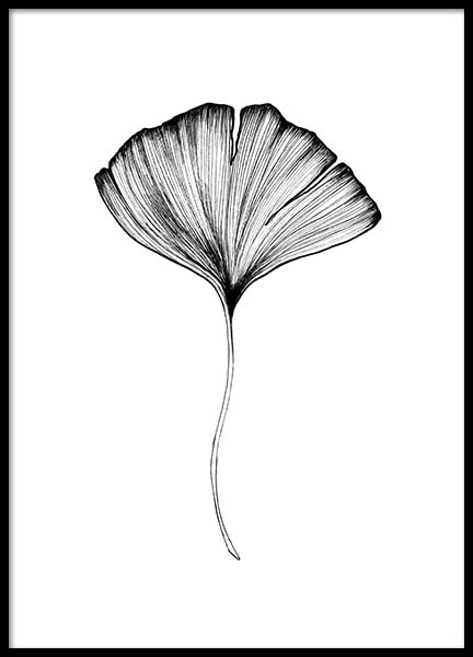Ginkgo Leaf Poster in the group Posters & Prints / Black & white at Desenio AB (3599)