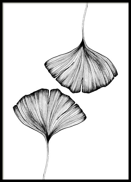 Ginkgo Leaves Poster in the group Posters & Prints / Black & white at Desenio AB (3600)