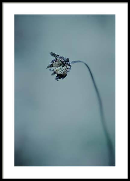 Waiting For Spring Poster in the group Posters & Prints / Botanical at Desenio AB (3646)