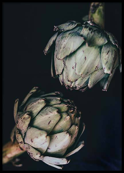 Artichokes Poster in the group Posters & Prints / Kitchen at Desenio AB (3677)