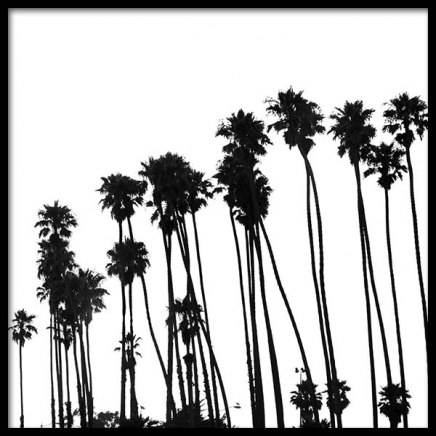 Venice Beach Palm Trees No1 Poster in the group Posters & Prints / Black & white at Desenio AB (3776)