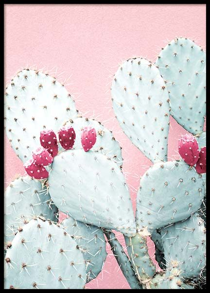Pastel Cactus No2 Poster in the group Posters & Prints / Photography at Desenio AB (3791)