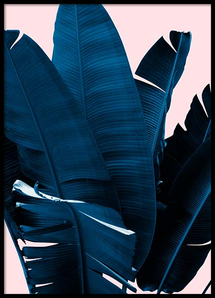 Blue Leaves On Pink No3 Poster in the group Posters & Prints / Photography at Desenio AB (3796)