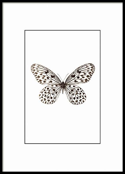 Small posters with insects and butterflies for clean interior design