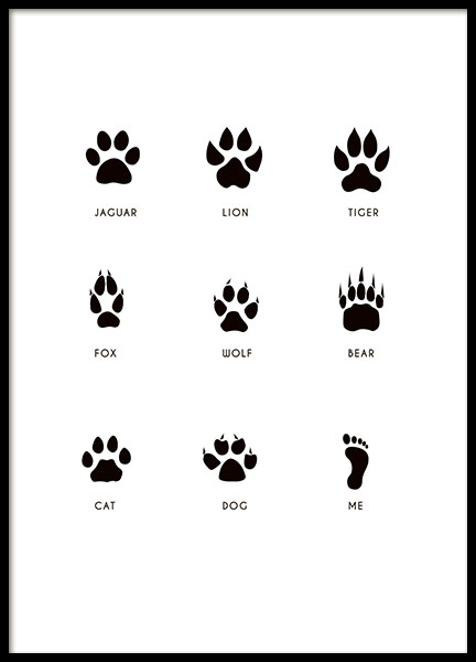Kids print, poster with paws from animals