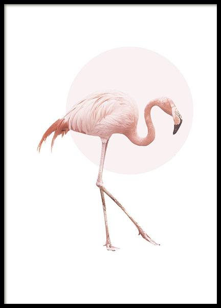 Print with a pink flamingo motif, animal