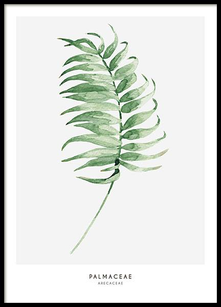 Print with a palm frond and green plant. Botanical posters online.