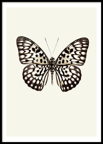 Prints with insects for trendy interior design online in our webshop