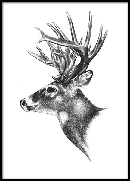 Black and white print with a reindeer, trendy prints for interior design
