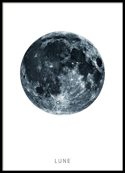 Black and white prints with illustrations of moon
