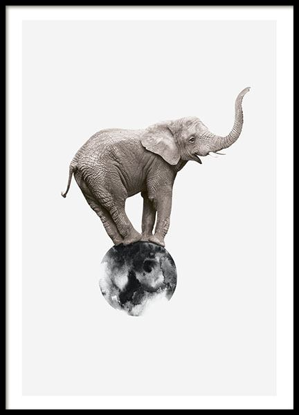 Print with photo art of elephant and graphic design for decor